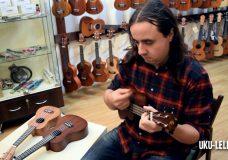 Недорогая и хорошая укулеле сопрано Baton Rouge UR11S Укулеле.ру