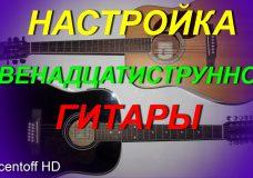Как настроить 12-тиструнную гитару