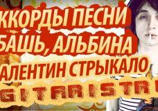 Разбор, аккорды и бой в песне 'Ебашь, Альбина' - Валентин Стрыкало
