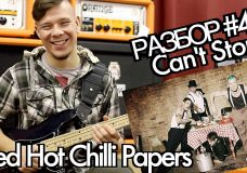 show MONICA Bass Разбор 4 — Red Hot Chili Peppers — Can't Stop