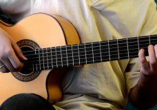 В мире животных (Странствие) вступление — разбор на гитаре