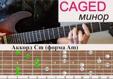 ВСЕ АККОРДЫ. Урок 3. система CAGED (минорные аккорды)
