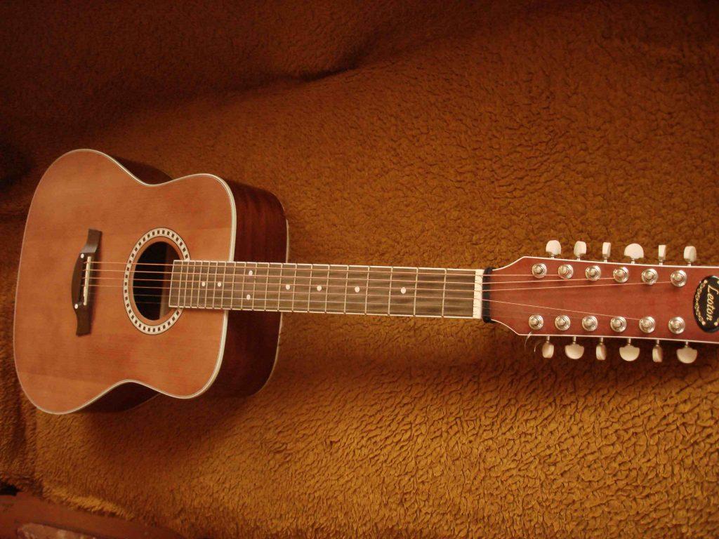 Двенадцатиструнная гитара фото 1