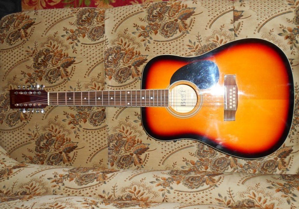 Двенадцатиструнная гитара фото 2