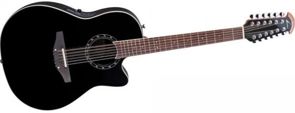 Двенадцатиструнная гитара фото 6