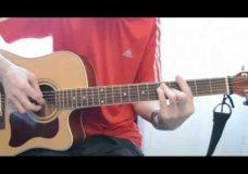 'Ты неси меня река'(под гитару), аккорды