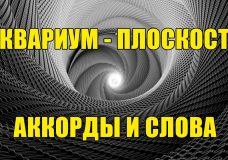 Аквариум (БГ) - Плоскость (аккорды и слова)