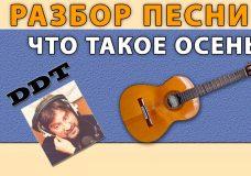 ДДТ ОСЕНЬ Разбор песни. Как играть песню ОСЕНЬ гр. ДДТ на гитаре