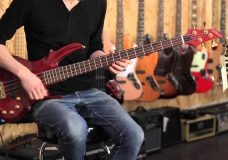 ESP Edwards Forest japan bass review
