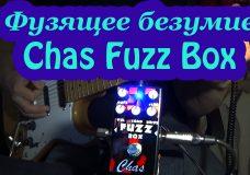 Фузящее безумие с Chas Fuzz Box