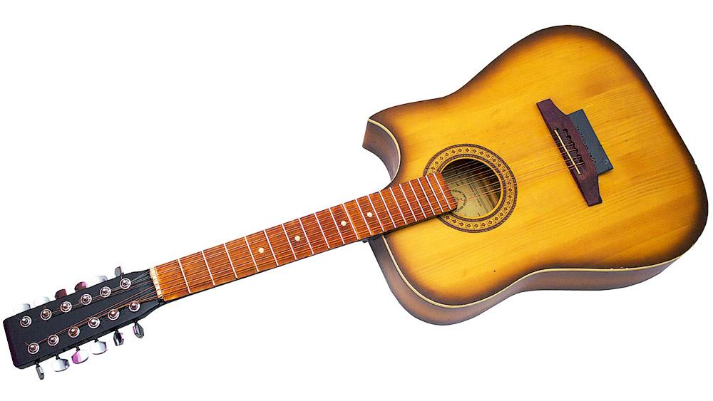 Двенадцатиструнная гитара фото 7