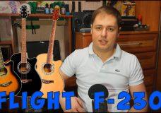 Хорошая первая гитара (Flight F-230 — обзор)