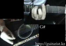 Lady Gaga - Paparazzi (Уроки игры на гитаре Guitarist.kz)