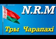 N.R.M-Тры Чарапахi(Разбор Кавера)