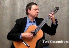 Обзор гитары Torres (Minyard Martinez) — guitar review