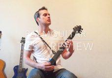 PalmGuitar Review (electric travel guitar)