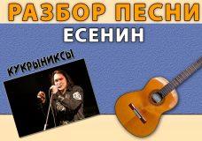 Разбор песни ЕСЕНИН гр. Кукрыниксы. Аккорды к песне ЕСЕНИН