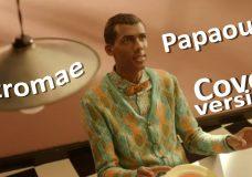 Stromae — Papaoutai Кавер-версия