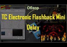 TC Electronic Flashback Mini Delay(видеоОбзор)