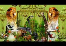 Жизнь в зоопарке (cover Майк Науменко)