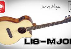 Электроакустика JAMES NELIGAN LIS-MJCFI