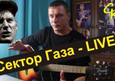 Как играть Сектор Газа — Live (Урок на песню)