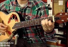 Электроакустическая гитара MARTINEZ W-164P