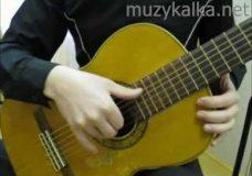 Самоучитель игры на гитаре — Гитара уроки для начинающих научиться играть за неделю