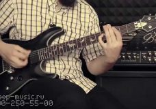 Гитара SCHECTER DAMIEN PLATINUM-6 FR