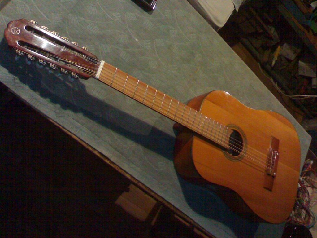 Двенадцатиструнная гитара фото 5