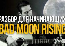 Bad Moon Rising простой разбор для начинающих — Уроки игры на гитаре Первый Лад