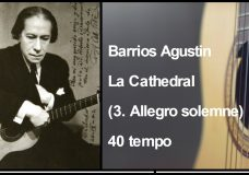 Barrios Agustin — La Cathedral (3. Allegro solemne) 40 tempo