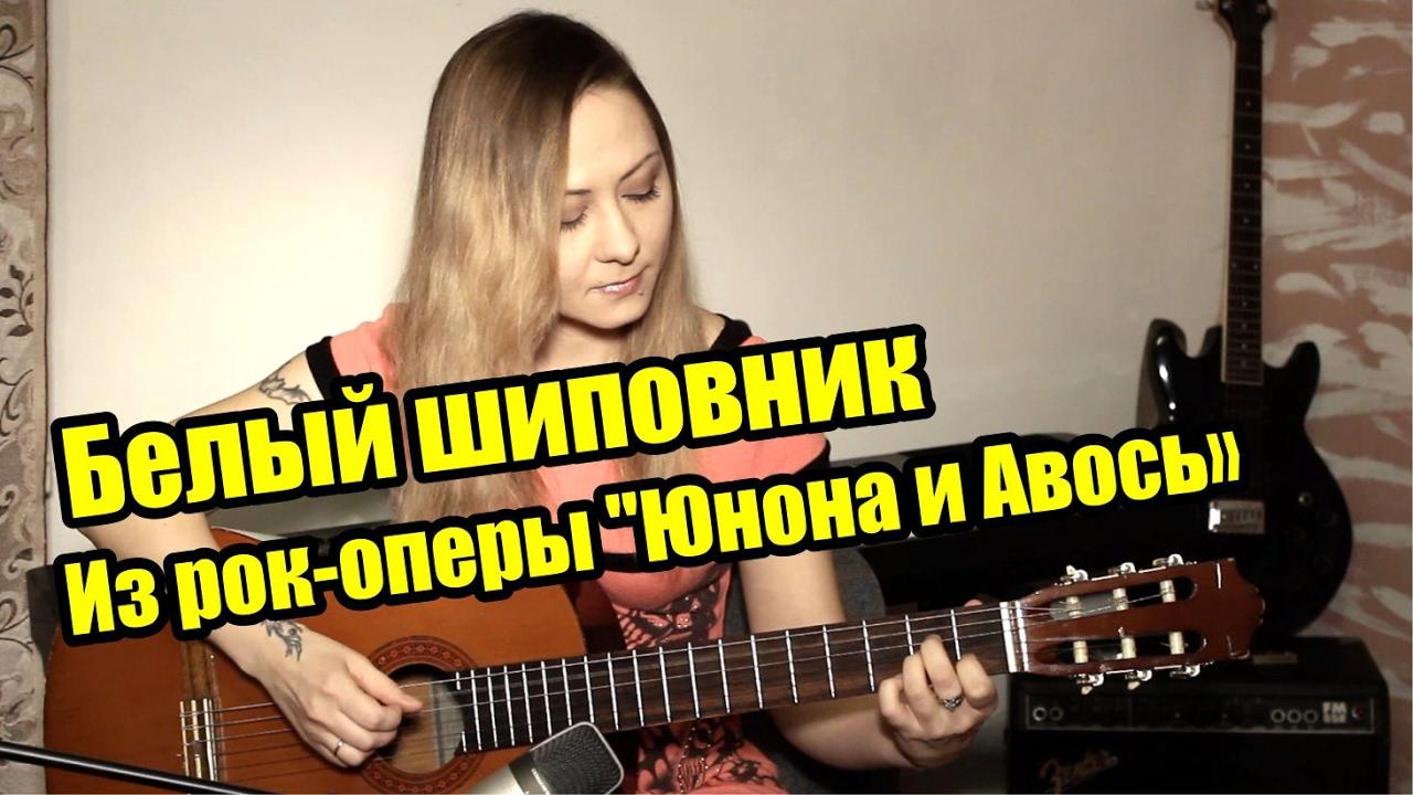 Белый шиповник - из рок-оперы 'Юнона и Авось' На гитаре разбор