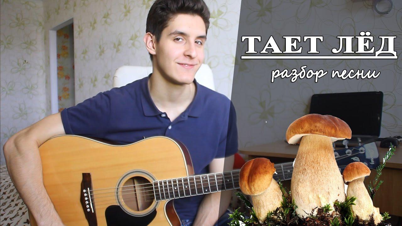 Как играть ГРИБЫ - ТАЕТ ЛЕД аккорды (Полный Разбор Песни)