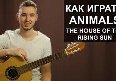 Как играть The Animals — House of the rising sun на гитаре Разбор, видео урок
