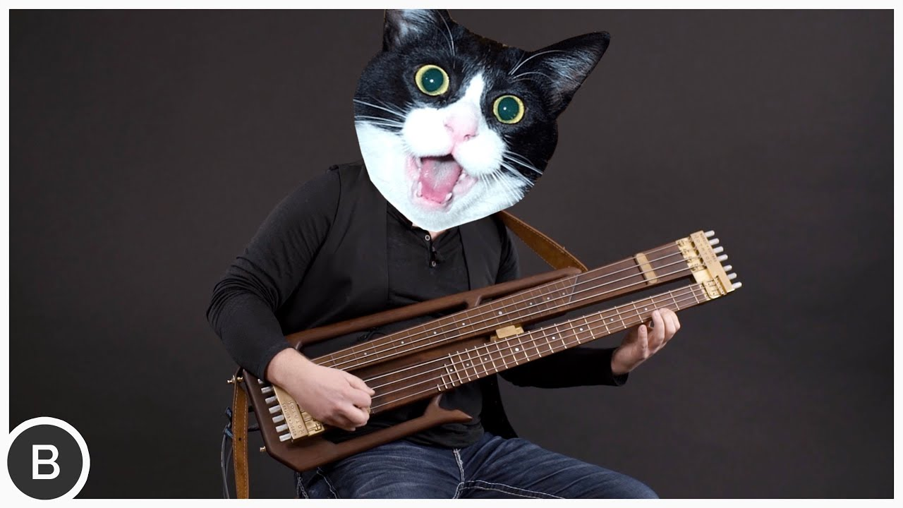 CRAZY ROTATING DOUBLE NECK BASS