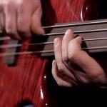 MARUSZCZYK JAZZUS FRETLESS BASSES BassTheWorld.com
