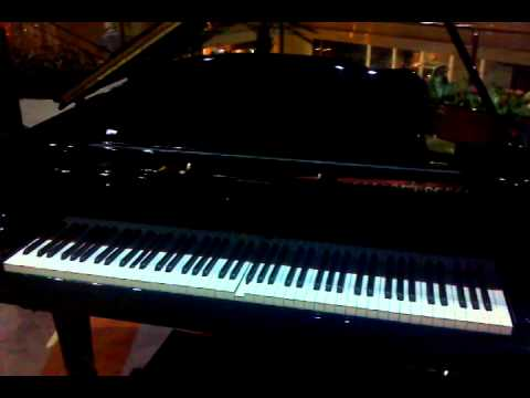 Self playing piano - Pullman hotel - Guangzhou, China