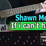 Shawn Mendes - If I Can't Have You, How to play, Chords, Guitar lesson, Tutorial